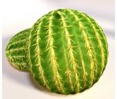 3D Polštářek  Kaktus