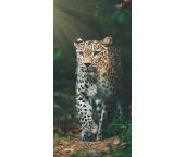 Froté osuška Gepard v pralese