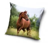 Dekorační polštářek Kůň Hnědák Na Louce