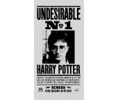 Dětská osuška Harry Potter Nežádoucí
