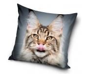 Dekorační polštářek Kočka Sibiřská Selfie