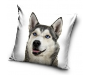 Dekorační polštářek Sibiřský Husky Selfie
